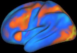 Neurevolution